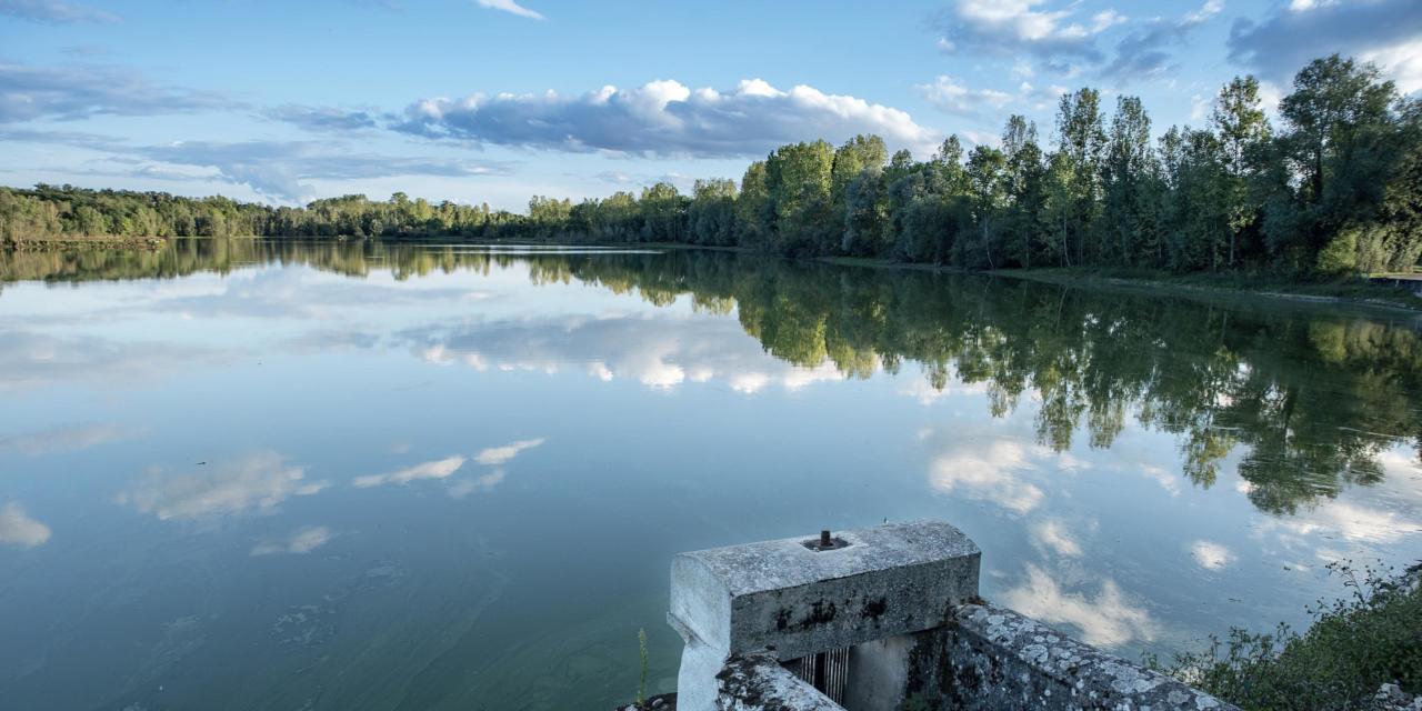 Un week-end de pêche en Dombes, les 16 et 17 octobre